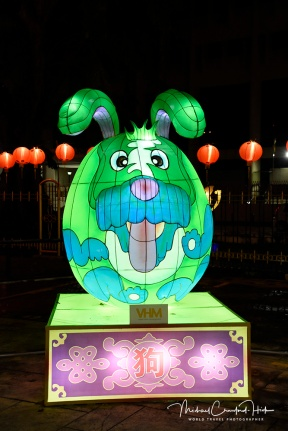 Dog Lantern at Chinese New Year